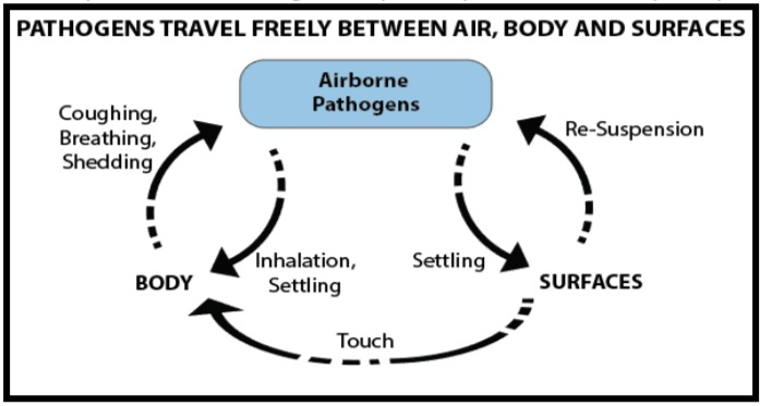 Aerobiology The study of airborne microorganisms, pollen, spores, and seeds especially as agents of infection.